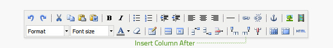 Insert column after is the fifth button from the right on the bottom row of the editor. A table cell must be selected before a column can be added.