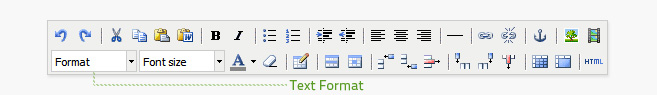 Text Format is the first dropdown from the left on the bottom row of the editor. It displays Paragraph by default.